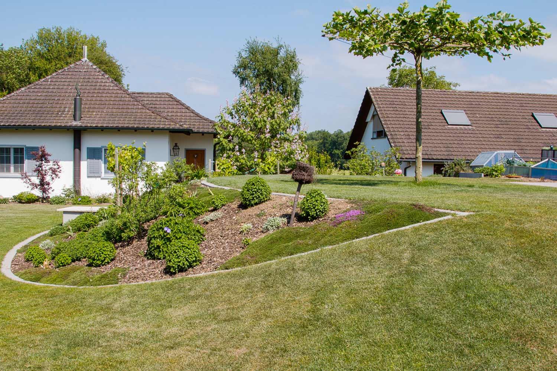 Hausrasen Schildknecht Gartenbau Gmbh